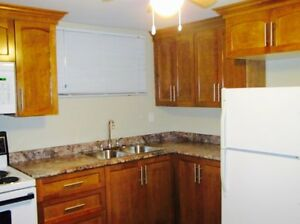 1 Bedroom Apartment for rent in Mount Pearl