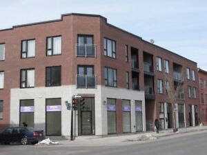 Amazing Loft-Style Condo in St-Henri for Rent Starting July 1