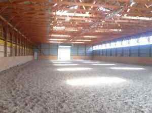 Riding Lessons at Grimsby facility