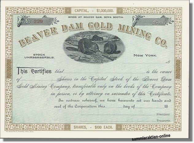 Goldminen-Aktie Ende des 19. Jahrhunderts - mit toller Vignette die zwei Biber abbildet