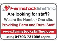 Stockman/Arable Tractor Driver