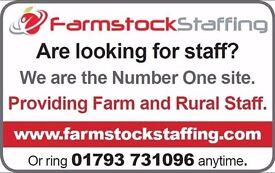 Shepherd and general farm work