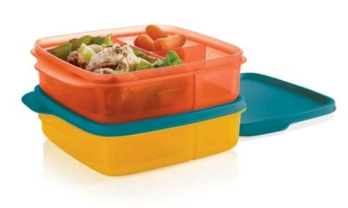 Tupperware Divided Lunch-It Dish Lunch Containers Set of 2 B