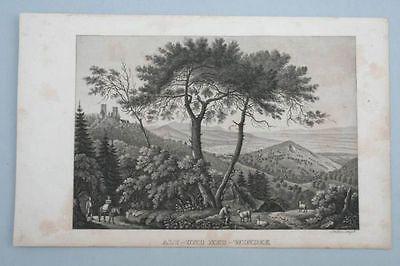 Alt-und Neu-Windek - Elsass - Aquatinta