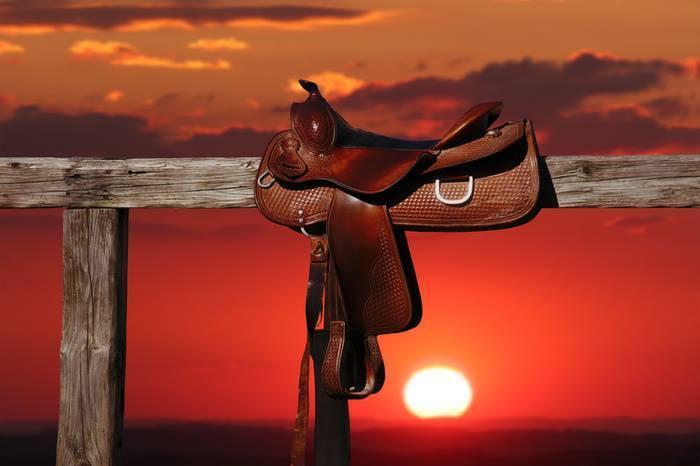 Horseplay Tack