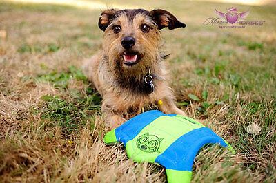 Chuckit! Flying Squirrel Hunde Frisbee schwimmfähig ca 27x27 cm blau/orange  ()