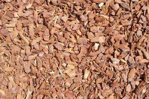 Tieroase Pinienrinde für alle Terrarien, 7-15 mm, 4 x 20 L (Abbildung ähnlich)