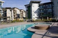 JUNE 1st AVAIL.  VERVE STUDIO CONDO. ONE YEAR LEASE. FURNISHED.