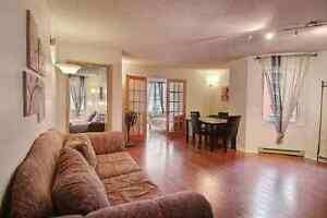Fully Furnished and Equipped 2 BR Huge Downtown Condo