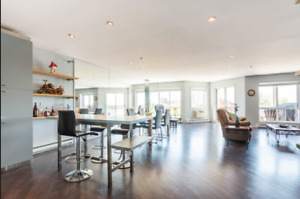 Beautiful loft waterview in Brossard, furnished option available