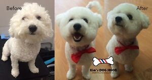 Kim's DOG Grooming SALON Fremantle Fremantle Area Preview