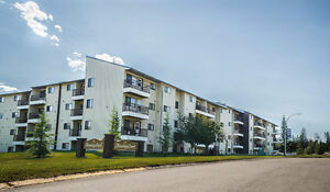 FOR RENT: 1 Bedroom Apartment In Elkford