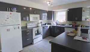 Subletting 1 bedroom at Domus 72 Marshall (available now) Kitchener / Waterloo Kitchener Area image 7