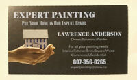 27 Years painting experience available for hire.