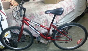 Mountain bike - youth size - 18 speed