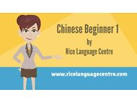 Chinese Beginner Online Course level 1 - Everything in HSK1