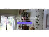 Website Design - Introductory Offer - £235