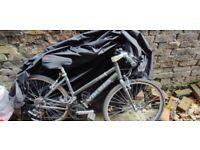 Ladies Viking Pimlico Hybrid Bike
