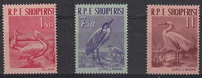 ALBANIA 1961 Serie Uccelli Diversi 3 Val Yvert 552-4 MNH**