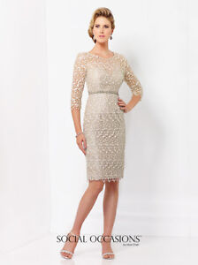 Beautiful formal or Mother of the Bride/groom dress
