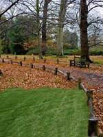 Fall Cleanup, Eaves Troughs, Raking & More!