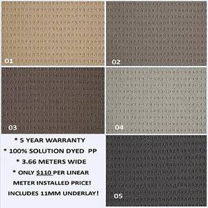 Cheap Carpets & Vinyls.....Samples Brought To You.  FREE QUOTE. Helensvale Gold Coast North Preview
