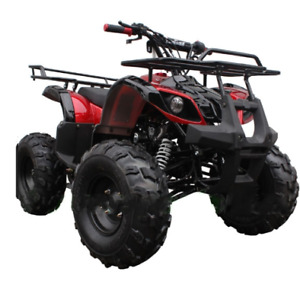 FINANCE YOUR ATV! Any Credit, Any Vehicle!