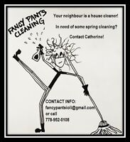 Cheap House Cleaning $60-100 For Apartments and Houses