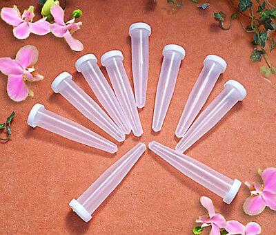 100 Blumenröhrchen  Orchideenröhrchen Sparpack 24ml