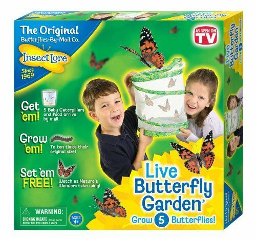 Insect Lore Live Bufferfly Garden Hatching Kit for Kids - Grow 5 caterpillars