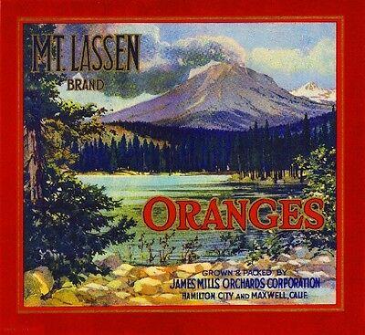 Hamilton City Maxwell Mt. Lassen Orange Citrus Fruit Crate Label Art Print