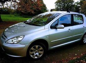 Peugeot 307 1.6 03 Plate