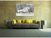 Stunning horses high quality canvas - glows in the dark