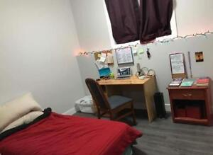 Furnished room for rent in University Heights