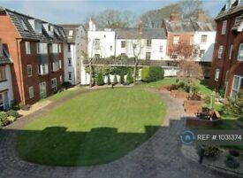 1 bedroom flat in Bartholomew Street West, Exeter, EX4 (1 bed) (#1031374)
