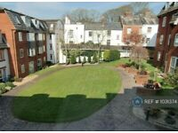 1 bedroom flat in Bartholomew Street West, Exeter, EX4 (1 bed) (#1031374)