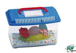 Acquario portatile vaschetta in plastica eko piccolo for Acquario completo tartarughe