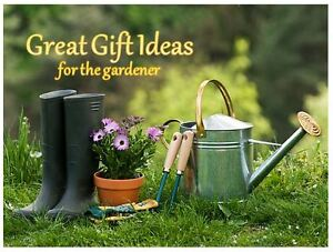 * * I Have SO MANY great gift ideas! * * CHECK IT OUT!