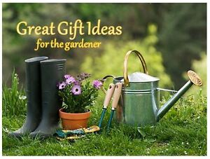 *** BRAND NEW ITEMS *** Discounted - GREAT DEALS