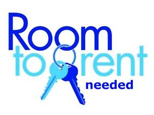 Looking for shared accommodations