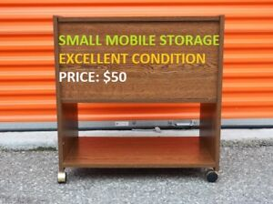 Small Mobile Storage, Excellent Condition, Cheap Price!
