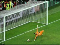 Goal keeper for powerleague