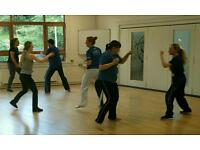 Lau Gar Kung Fu & Kickboxing