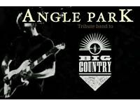BASS PLAYER REQUIRED FOR BIG COUNTRY TRIBUTE BAND 'ANGLE PARK' - *EXPIRED AD CONTINUED*