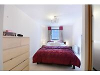 **Well presented 1 bedroom apartment - In a quiet development - Close to Bermondsey Station**