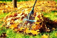LAST CHANCE!! Leaf Removal & Gutter Cleaning!!