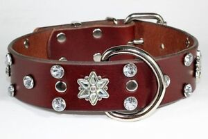AWESOME COLLARS & LEASHES