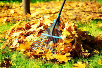 Total Outdoor Property Maintenance