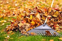 Need leaves raked? Snow shovelled?