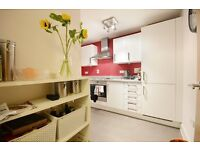 Minutes from Bermondset Station-Large 1 bedroom apartment - NO AGENCY FEE!